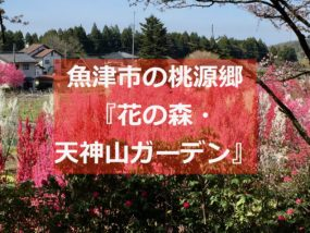 天神山ガーデンイメージ