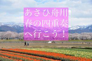 あさひ舟川春の四重奏イメージ