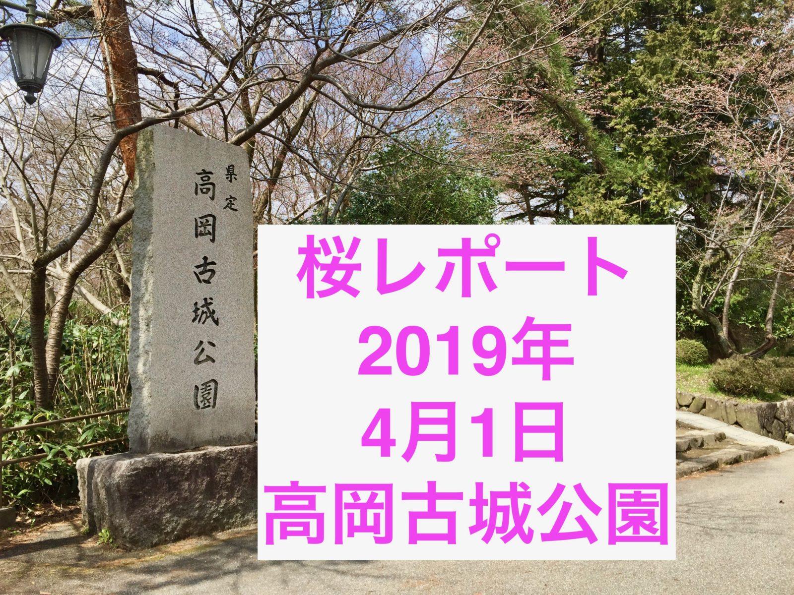 高岡古城公園桜